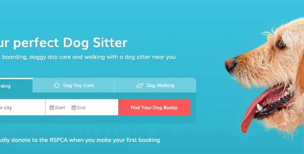 DogBuddy Dogsitter App