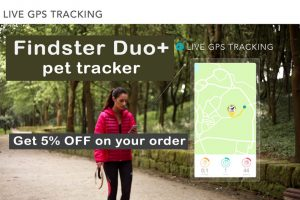 findster coupon